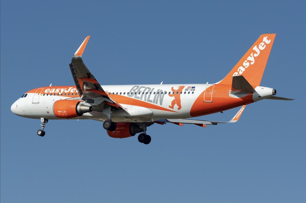 8AF46F1E-3AD6-4108-A359-2B5743934431.jpeg