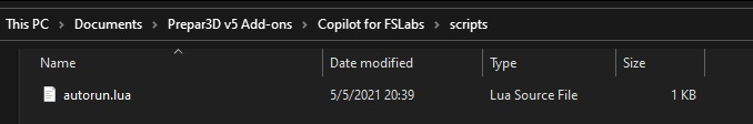 FSLabs Copilot.jpg
